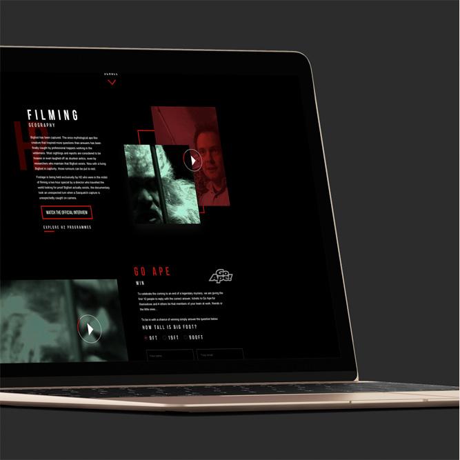 Landing page campaign design