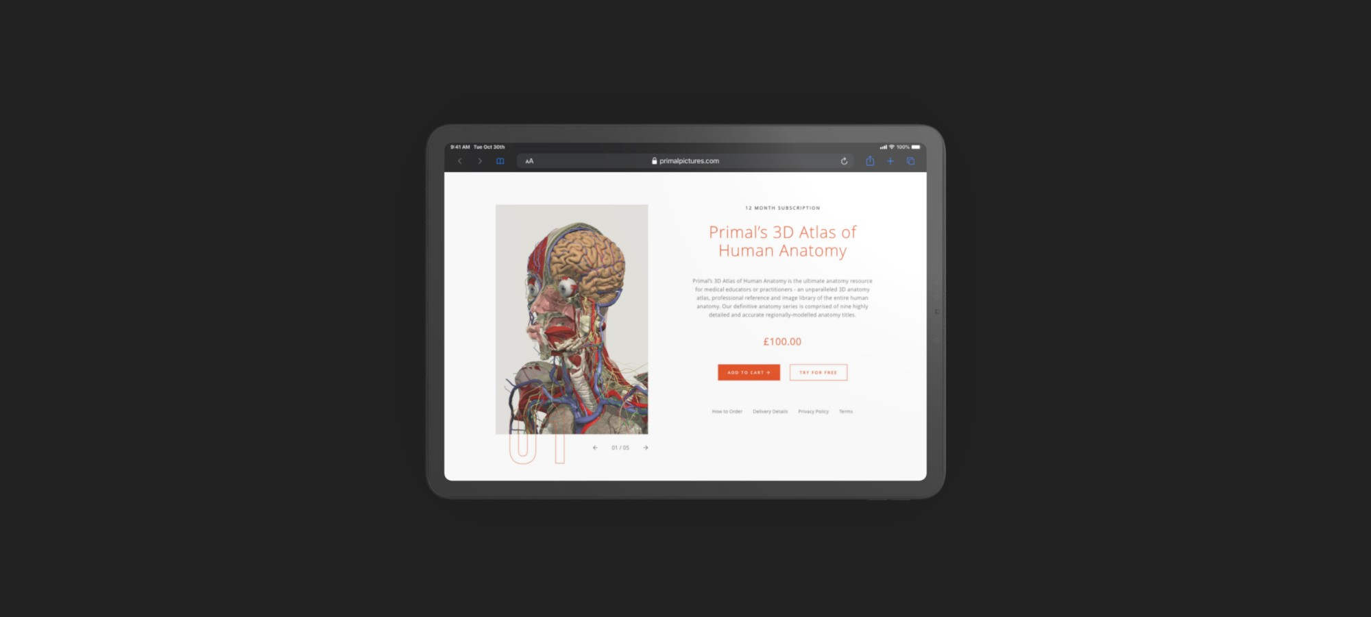 tablet viewing primal website