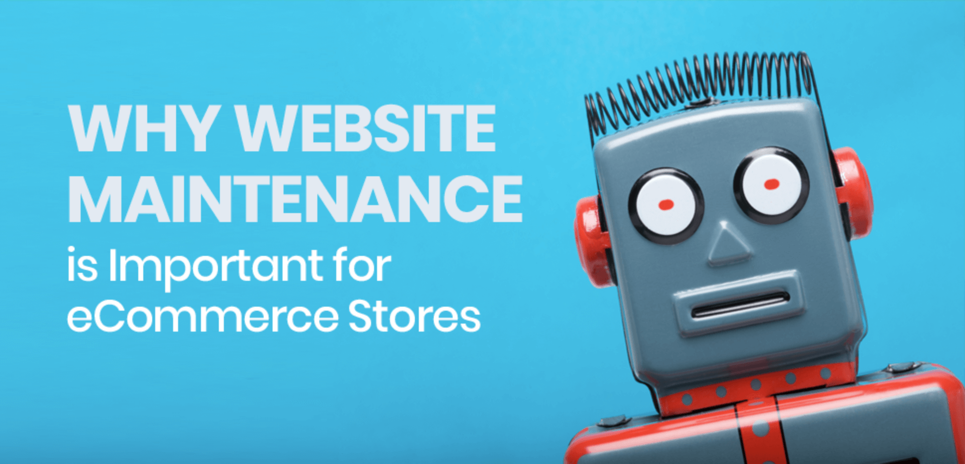 Why Website Maintenance is Important for eCommerce Stores