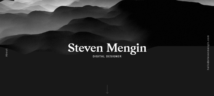 Steven Mengin brochure website design example